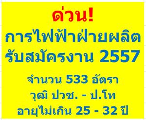 egat-job-recruit-2014-533-positions