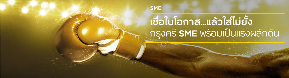 SMESME_Boxing_banner