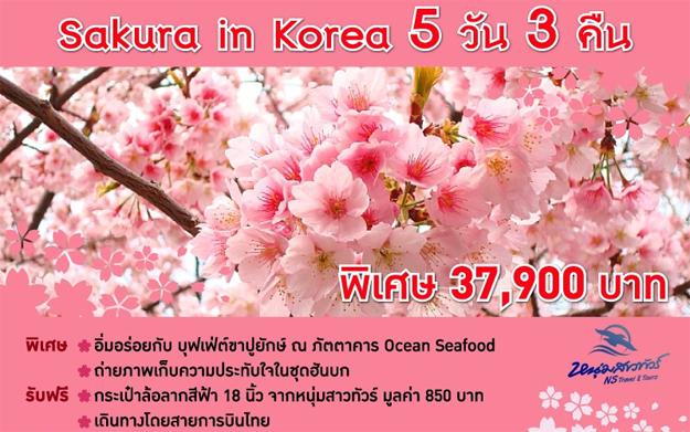 ราคาแพคเกจทัวร์เกาหลี 2557
