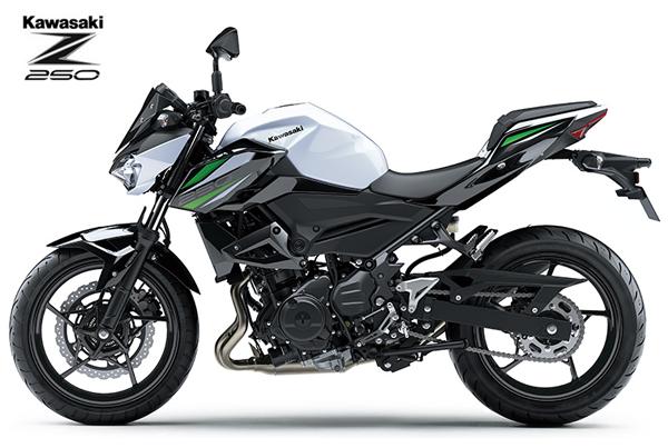 Z250, 2019, ตารางผ่อน, ราคาผ่อน, ราคา, Kawasaki Z250