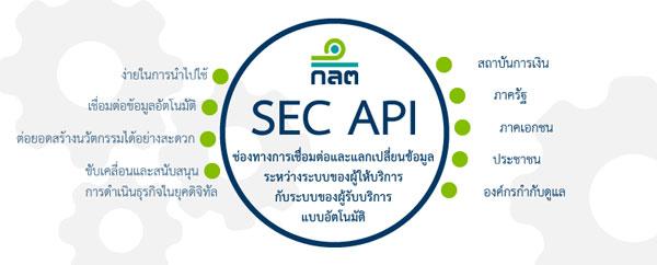 SEC API