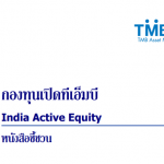 TMB India Active Equity